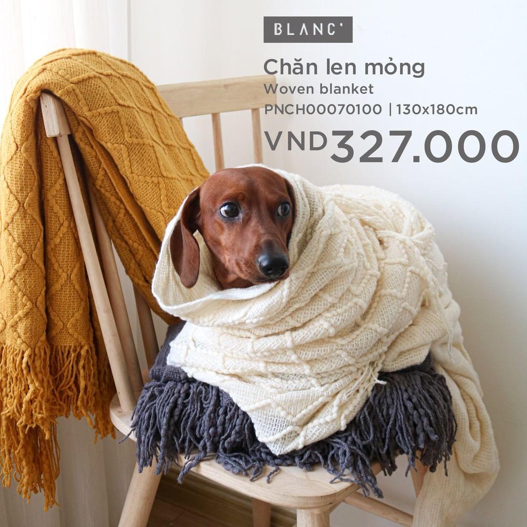 Sắm chăn sofa vừa xinh vừa ấm giá chỉ từ 98k - Ảnh 3.
