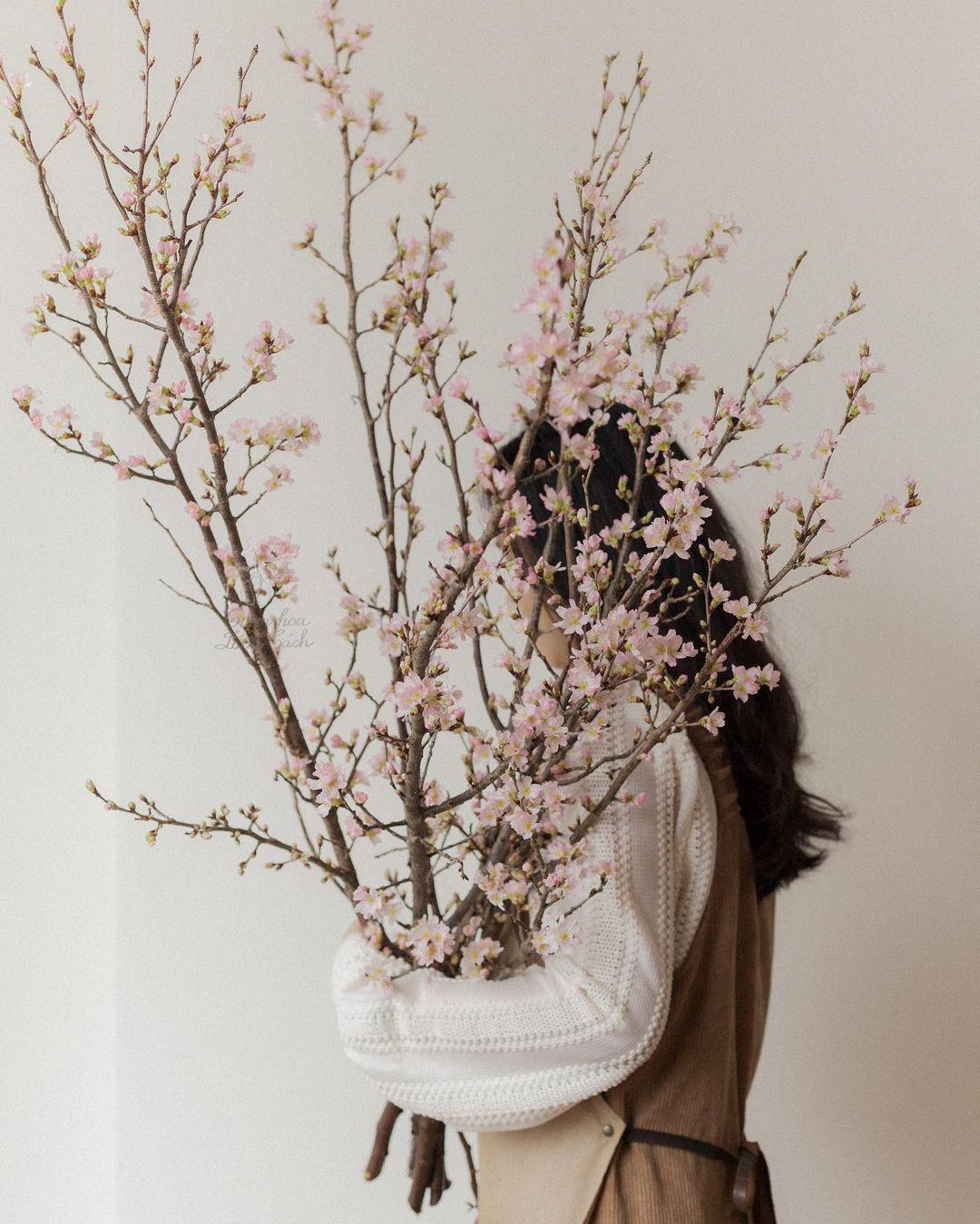 Hoa chơi Tết: Sakura Nhật được hội sành điệu mê tít, giá cao nhưng vẫn lọt top hoa siêu hot - Ảnh 4.