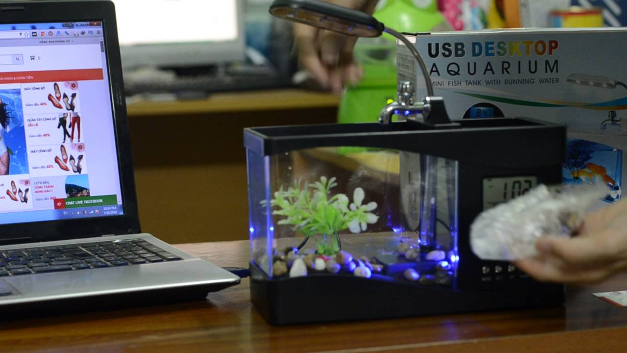 Muốn công việc hanh thông, tiền vào như nước thì hãy đặt những món đồ phong thủy này trên bàn làm việc! - Ảnh 2.
