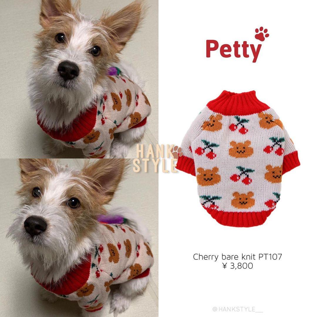 Cún cưng của Rosé lắm đồ xinh ghê: Từ đồ chơi vài trăm nghìn đến áo tiền triệu sành điệu như người - Ảnh 9.