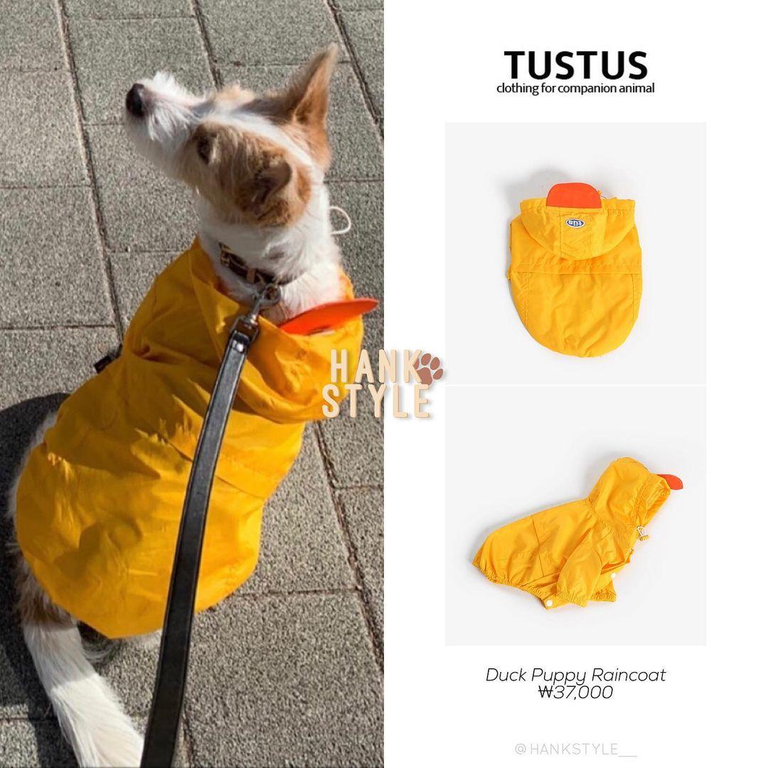 Cún cưng của Rosé lắm đồ xinh ghê: Từ đồ chơi vài trăm nghìn đến áo tiền triệu sành điệu như người - Ảnh 7.